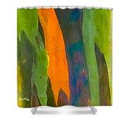 Rainbow Eucalyptus 5 Shower Curtain