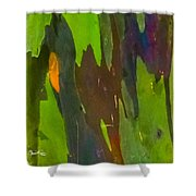 Rainbow Eucalyptus 6 Shower Curtain