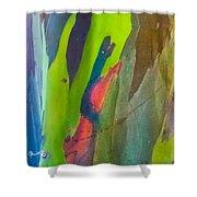 Rainbow Eucalyptus 7 Shower Curtain