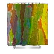 Rainbow Eucalyptus 8 Shower Curtain