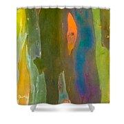 Rainbow Eucalyptus 9 Shower Curtain