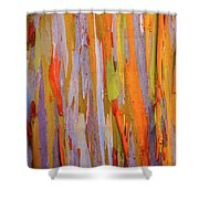 Rainbow Eucalytpus Shower Curtain