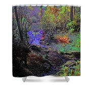 Rainbow Fairies Sweep Across The Landscape Shower Curtain