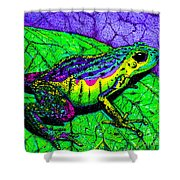 Rainbow Frog 2 Shower Curtain
