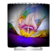 Rainbow In The Iris Shower Curtain