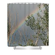 Rainbow In The Trees Shower Curtain