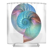 Rainbow Nautilus Pair On White Shower Curtain