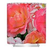 Rainbow Of Roses Shower Curtain