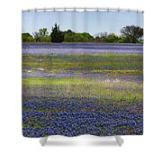 Rainbow On The Ground Shower Curtain