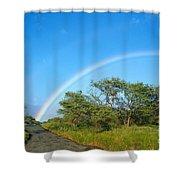 Rainbow Over Treetops Shower Curtain