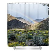 Rainbow Palm Shower Curtain