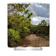 Rainbow Path Shower Curtain