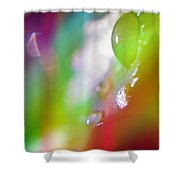 Rainbow Rain 2 Shower Curtain