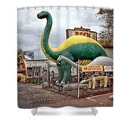 Rainbow Rock Shop Dino Shower Curtain