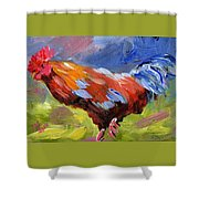 Rainbow Rooster Shower Curtain