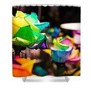 Rainbow Roses Shower Curtain