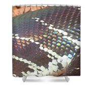 Rainbow Scales Shower Curtain