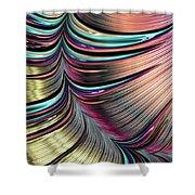 Rainbow Springs Shower Curtain