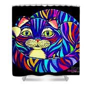 Rainbow Striped Cat 2 Shower Curtain
