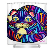 Rainbow Striped Cat Shower Curtain