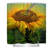 Rainbow Sunflower Shower Curtain