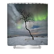 Rainbow Tree Shower Curtain
