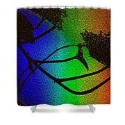 Rainbows And Stary Clouds Shower Curtain