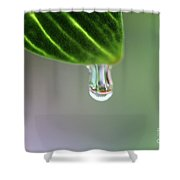 Raindrop 4 Shower Curtain