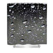 Raindrops  1 Shower Curtain