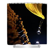 Raindrops From Sunflower Petal Shower Curtain