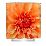 Raindrops In Spring Shower Curtain