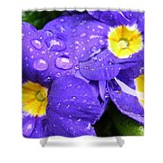 Raindrops On Blue Flowers Shower Curtain