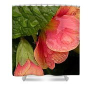 Raindrops On Coral Flowers Shower Curtain