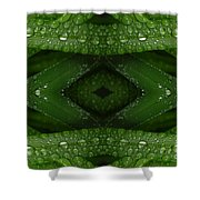 Raindrops On Green Leaves Collage Shower Curtain