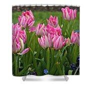 Raindrops On Tulips Shower Curtain