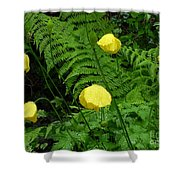 Raindrops On Yellow And Green Shower Curtain