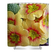 Raindrops On Yellow Flowers Shower Curtain