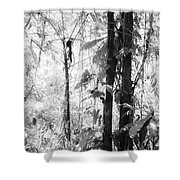 Rainforest Abstract Shower Curtain