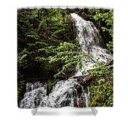 Rainforest Falls Shower Curtain