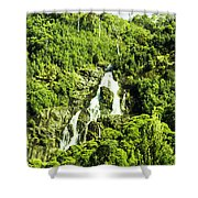 Rainforest Rapids Shower Curtain