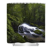 Rainforest Riverflow Scene Shower Curtain