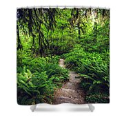Rainforest Trail Shower Curtain
