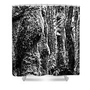 Rainforest Ubiquitous Growth  Shower Curtain