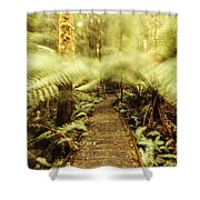 Rainforest Walk Shower Curtain