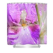 Raindrops On Persian Berry Iris Shower Curtain