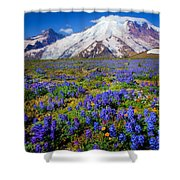 Rainier Lupines Shower Curtain