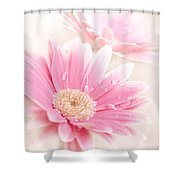 Raining Petals Shower Curtain