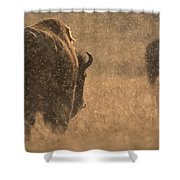 Rainy Bison Shower Curtain