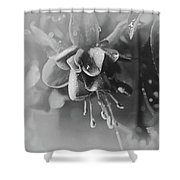 Rainy Day In June Shower Curtain