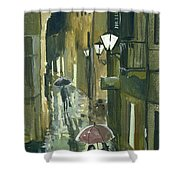 Rainy Evening In Kotor Shower Curtain